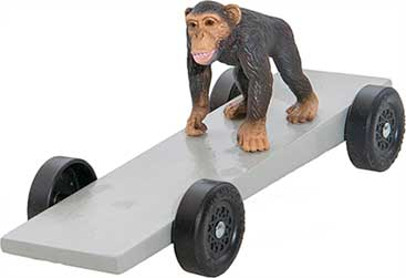 Monkey pinewood derby car