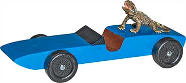 Lizard Pinewood Derby Car