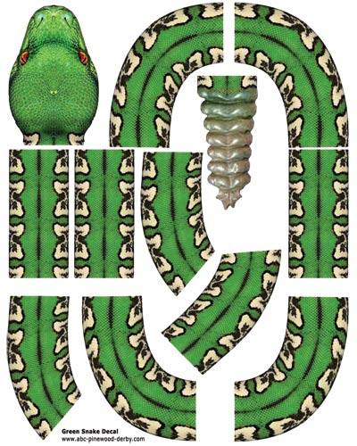 Green Snake Decal For Pinewood Derby Cars