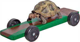Turtle pinewood derby car